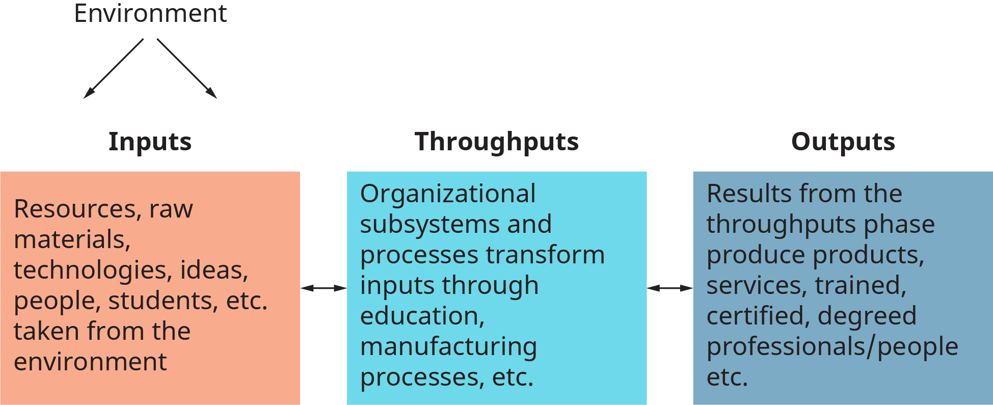 A diagram illustrates the open system model of an organization.