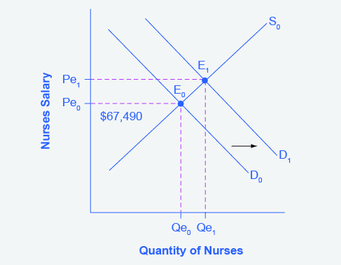The graph shows an increase in the demand for and nurses from D0 to D1.