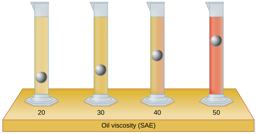 "An image of four graduated cylinders sitting on a table labeled ""Oil viscosity ( S A E )"" is shown. The left-hand cylinder, labeled ""20,"" is mostly filled with light tan liquid and a metal ball is drawn in the lower fifth of the cylinder, but not on the bottom. The second cylinder, labeled ""30,"" is mostly filled with light brown liquid and a metal ball is drawn about three-fourths of the way down cylinder. The third cylinder, labeled ""40,"" is mostly filled with medium brown liquid and a metal ball is drawn halfway down the cylinder. The right-hand cylinder, labeled ""50,"" is mostly filled with brown liquid and a metal ball is drawn near the top of the liquid in the cylinder."