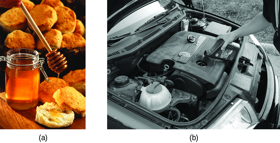 "Two photographs are shown and labeled ""a"" and ""b."" Photo a shows a jar of honey with a dipper drizzling it onto a biscuit. More biscuits are shown in a basket in the background. Photo b shows the engine of a car and a person adding motor oil to the engine."