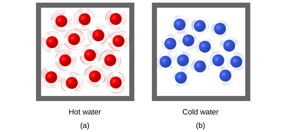 "Two molecular drawings are shown and labeled a and b. Drawing a is a box containing fourteen red spheres that are surrounded by lines indicating that the particles are moving rapidly. This drawing has a label that reads ""Hot water."" Drawing b depicts another box of equal size that also contains fourteen spheres, but these are blue. They are all surrounded by smaller lines that depict some particle motion, but not as much as in drawing a. This drawing has a label that reads ""Cold water."""