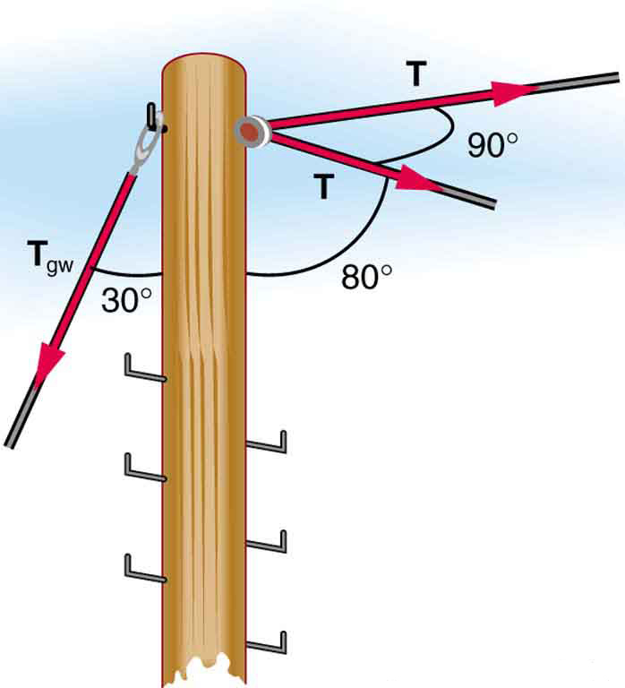A telephone pole is located at a ninety degree bend in a power line. Each part of the line is at an angle of eighty degrees with the pole and has a tension labeled T. A guy wire is attached to the top of the pole at an angle of thirty degrees with the vertical.