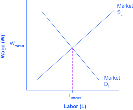 The graph compares the demand and supply for labor.  The x-axis is Labor, and the y-axis is Wages.  The Demand for Labor curve slopes downward from the top left to the bottom right.  The Supply for Labor slopes upward from the bottom left to the top right.  The two curves intersect at the equilibrium wage and employment level.