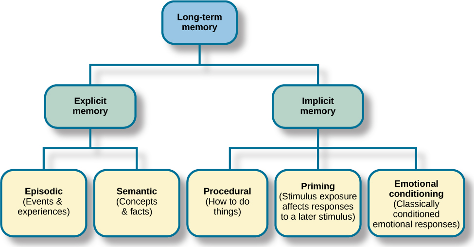 """A diagram consists of three rows of boxes. The box in the top row is labeled """"long-term memory;"""" a line from the box separates into two lines leading to two boxes on the second row, labeled """"explicit memory"""" and """"implicit memory."""" From each of the second row boxes, lines split and lead to additional boxes. From the """"explicit memory"""" box are two boxes labeled """"episodic (events and experiences)"""" and """"semantic (concepts and facts)."""" From the """"implicit memory"""" box are three boxes labeled """"procedural (How to do things),"""" """"Priming (stimulus exposure affects responses to a later stimulus),"""" and """"emotional conditioning (Classically conditioned emotional responses)."""""""