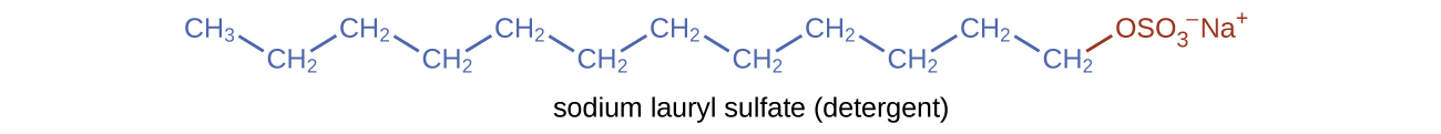 This figure shows a structural formula for a detergent known as sodium lauryl sulfate. A hydrocarbon chain composed of 12 carbon atoms and 25 hydrogen atoms is shown with an ionic end involving a negatively charged sulfur and four oxygen atoms at the ionic end of the chain. A positively charged N a superscript plus is also shown at the ionic end.