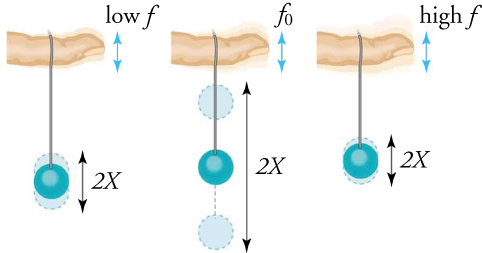 A ball bobs up and down with the greatest amplitude when the finger drives its oscillation at the fundamental frequency.