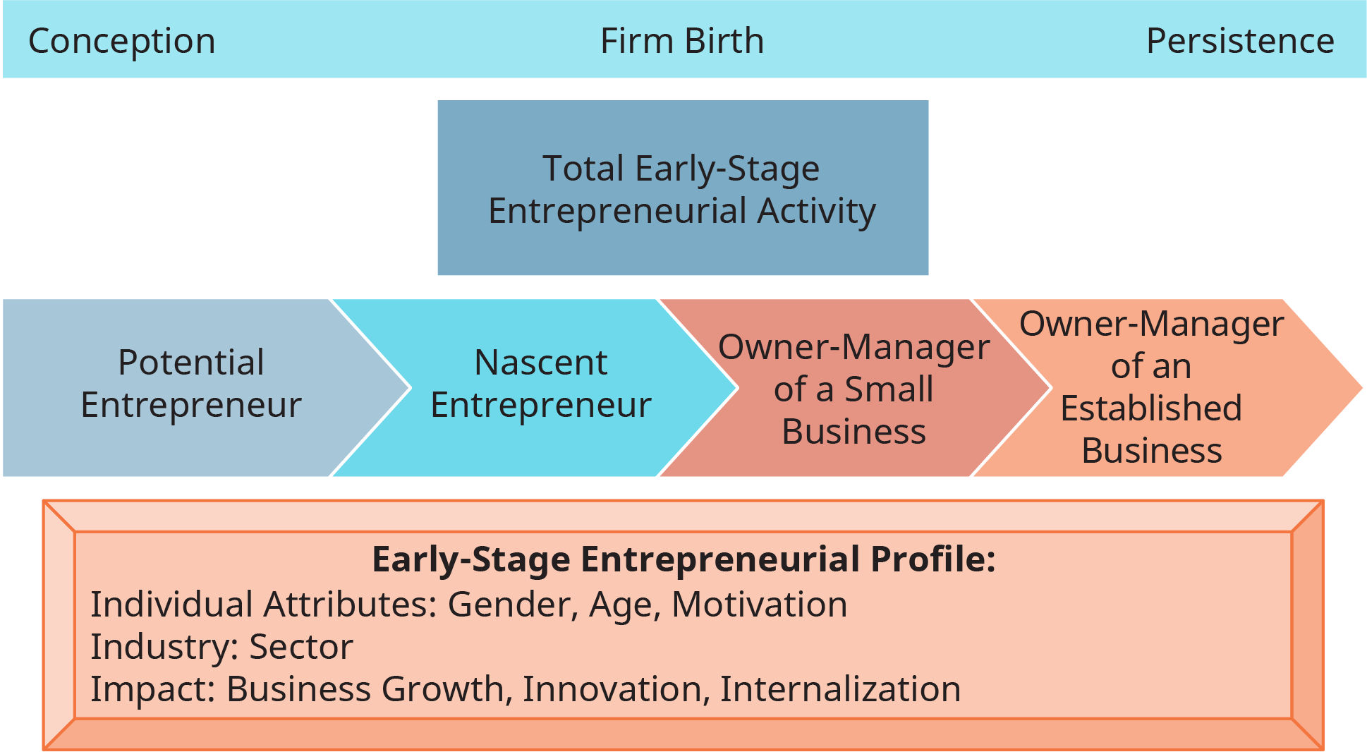 A diagram illustrates the model and measures of entrepreneurial activity.