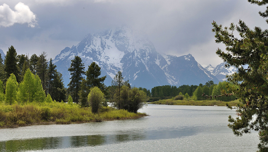 Photo of Grand Teton National Park shows an oxbow bend in a river with a grassy bank and a variety of deciduous and coniferous trees. Snowcapped mountains are in the background.