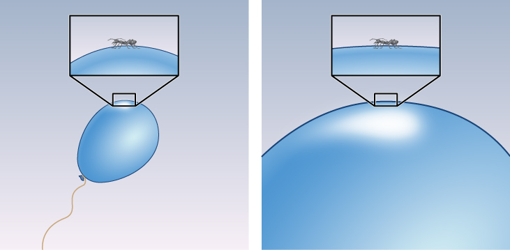 Analogy for Inflation. The panel at left shows a small blue balloon, with an inset expanded to show an ant on the curved surface. The ant could easily detect the curvature of the balloon. The panel at right shows the balloon hugely inflated, with an inset expanded to show an ant on the much flatter surface. The ant would have a difficult time detecting the curvature of the balloon.
