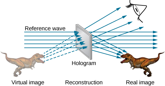 A screen in the center is labeled hologram, reconstruction. Rays labeled reference wave pass through it from left to right. A dinosaur to the right is labeled real image. The dinosaur is facing left. Rays from the screen fall on it. A faded image of a dinosaur facing right is shown to the left of the screen. This is labeled virtual image. Rays from here pass through the screen and reach the eye of the observer.