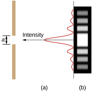 Figure a shows a vertical line on the left side. This has a gap of length a. A vertical wave is shown on the right. The wave has a high crest in the center, corresponding to the slit. The wave attenuates on both top and bottom. An arrow along the central crest of the wave, pointing towards the slit is labeled intensity. Figure b shows a strip with horizontally marked light and dark lines. The central line, corresponding to the slit is the brightest.