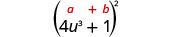 4 u cubed plus 1, in parentheses, squared. Above the expression is the general formula a plus b, in parentheses, squared.