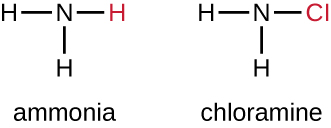 Ammonia has an N and 3 Hs.  Chloramine has an N, 2 Hs and 1 Cl.