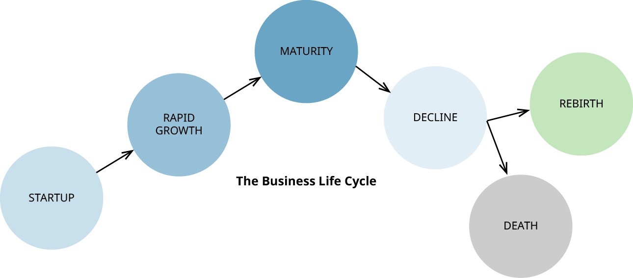 Business lifecycle from startup to rapid growth to maturity to decline and then to either rebirth or death.