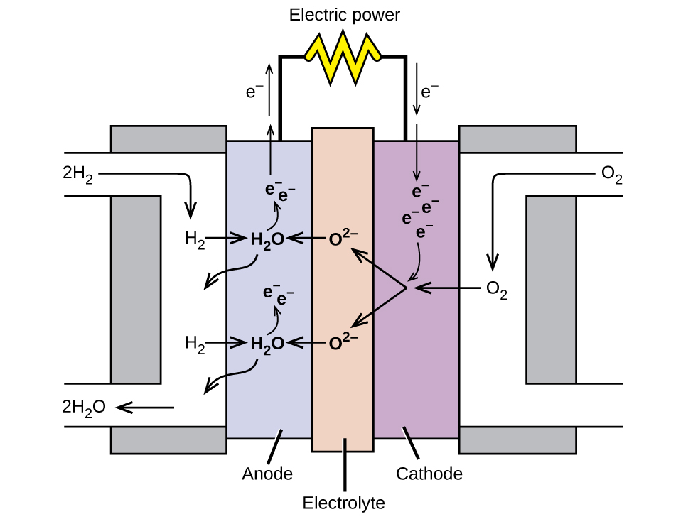 "A diagram is shown of a hydrogen fuel cell. At the center is a narrow vertical rectangle which is shaded tan and labeled ""Electrolyte."" To the right is a slightly wider and shorter purple rectangle which is labeled ""Cathode."" To the left is a rectangle of the same size which is labeled ""Anode."" Grey rectangles that are slightly wider and longer are at the right and left sides, attached to the purple and blue rectangles. On the right side, a white region overlays the grey rectangle. This white region provides a pathway for O subscript 2 to enter at the upper left, move inward and along the interface with the purple region, and exit to the lower right. A similar pathway overlays the grey region on the left, allowing a pathway for the entry of H subscript 2 from the upper right along the interface with the blue rectangle, allowing for the exit of H subscript 2 O out to the lower left of the diagram. Black line segments extend upward from the blue and purple regions. These line segments are connected by a horizontal segment that has a yellow zig zag shape at the center. This shape is labeled ""Electric power."" At the left of the diagram, in the upper left white region, 2 H subscript 2 is followed by an arrow that points right and down to H subscript 2. An arrow points right into the blue region to H subscript 2 O. A curved arrow point up to e superscript negative. Another e superscript negative is placed nearby and has an upward pointing arrow extending up to the left of the line segment extending from the purple region. A second arrow points upward along this segment with the label ""e superscript negative"" to its left. A curved arrow extends down and to the left from the H subscript 2 O into the white region. A second H subscript 2 O is shown below the first in the blue region repeating the arrow patterns established above. At the lower left, an arrow points left, to the exit of the white region. At the tip of this arrow is the label ""2 H subscript 2 O."" In the central brown region, O superscript 2 negative is listed twice with arrows pointing left, to the H subscript 2 O formulas in the blue region. At the upper right, O subscript 2 is shown with an arrow pointing left and down to O subscript 2 in the white region. An arrow points left from this point into the purple region. From the tip of the arrow, two arrows point to the two O subscript 2 negative structures in the brown central region. An arrow, labeled ""e superscript negative"" points downward to the right of the line segment above the purple region. A second arrow extends down into the purple region, pointing to e superscript negative. Three additional e superscript negative symbols appear nearby. An arrow extends from them to the point where the arrows meet in the purple region."