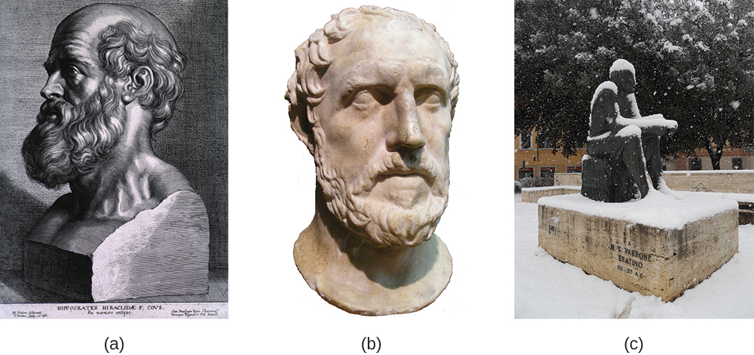 Figure a is a drawing of a bust of Hippocrates. Figure b is a photo of a sculpture of Thucydides's head. Figure c is a photo of a sculpture of Marcus Terentius Varro.