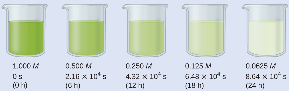 "A diagram of 5 beakers is shown, each approximately half-filled with colored substances. Beneath each beaker are three rows of text. The first beaker contains a bright green substance and is labeled below as, ""1.000 M, 0 s, and ( 0 h )."" The second beaker contains a slightly lighter green substance and is labeled below as, ""0.500 M, 2.16 times 10 superscript 4 s, and ( 6 h )."" The third beaker contains an even lighter green substance and is labeled below as, ""0.250 M, 4.32 times 10 superscript 4 s, and ( 12 h )."" The fourth beaker contains a green tinted substance and is labeled below as, ""0.125 M, 6.48 times 10 superscript 4 s, and ( 18 h )."" The fifth beaker contains a colorless substance and is labeled below as, ""0.0625 M, 8.64 times 10 superscript 4 s, and ( 24 h )."""
