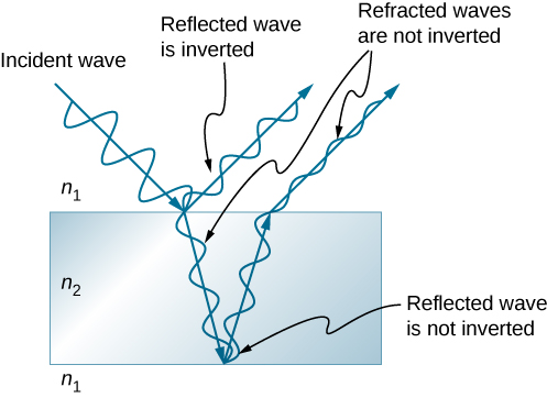 Picture is a schematic drawing of the light undergoing interference by a thin film. Wave reflected from the top of the film is inverted; wave reflected from the bottom of the film is not inverted; refracted waves are not inverted.