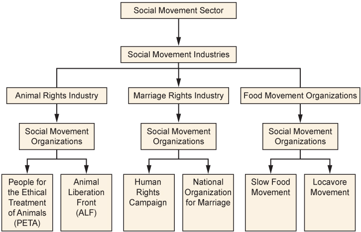 Pictured is a flow chart showing the tiers of the Social Movement Sector. At the top of the chart is the social movement sector. Below that box is the social movement industries. Three boxes come from that one; and, they are the animal right industry, the marriage rights industry, and the food movement industry. One box comes from the animal rights industry box; and, it is social movement organization. Two boxes come from the social movement organization box; and, they are People for the Ethical Treatment of Animals (PETA) and Animal Liberation Front (ALF). One box comes from the marriage rights industry; and, it is social movement organizations. Two more boxes come from the social movement organizations box; and, they are the Human Rights Campaign, and the National Organization for Marriage. One box come from the food movement industry box; and, it is social movement organizations. Two more boxes come from the social movement organizations box; and, they are the Slow Food Movement, and the Locavore Movement.