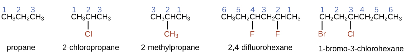This figure shows structural formulas for propane, 2 dash chloropropane, 2 dash methylpropane, 2 comma 4 dash difluorohexane, and 1 dash bromo dash 3 dash chlorohexane. In each of the structures, the carbon atoms are in a row with bonded halogen atoms and a methyl group bonded below the figures. Propane is listed as simply C H subscript 3 C H subscript 2 C H subscript 3, with the numbers 1, 2, and 3 appearing above the carbon atoms from left to right. 2 dash chloropropane similarly shows C H subscript 3 C H C H subscript 3, with the numbers 1, 2, and 3 appearing above the carbon atoms from left to right. A C l atom is bonded below carbon 2. The C l atom is red. 2 dash methylpropane similarly shows C H subscript 3 C H C H subscript 3, with the numbers 3, 2, and 1 appearing above the carbon atoms from left to right. A C H subscript 3 group is bonded beneath carbon 2 and is red. 2 comma 4 dash difluorohexane similarly shows C H subscript 3 C H subscript 2 C H C H subscript 2 C H C H subscript 3, with the numbers 6, 5, 4, 3, 2, and 1 appearing above the carbon atoms from left to right. F atoms are bonded to carbons 4 and 2 at the bottom of the structure and are red. 1 dash bromo dash 3 dash chlorohexane similarly shows C H subscript 2 C H subscript 2 C H C H subscript 2 C H subscript 2 C H subscript 3, with numbers 1, 2, 3, 4, 5, and 6 appearing above the carbon atoms from left to right. B r is bonded below carbon 1 and C l is bonded below carbon 3. Both B r and C l are red.