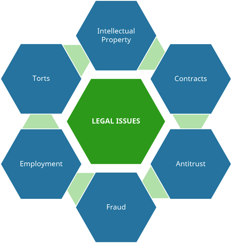 Legal Issues are composed of Intellectual Property, Contracts, Antitrust, Fraud, Employment, and Torts.