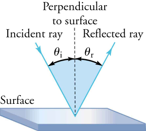 "A smooth, flat reflective surface is shown. A dotted line drops from the top of the figure and ends when it reaches the smooth surface. This line is perpendicular to the surface; there is a 90° angle between the surface and the perpendicular line. To the left of the perpendicular line, a ray (called an ""incident ray"" strikes the surface at a 45° angle. This ray—the ""reflective ray""—is reflected off the surface to the right of the perpendicular line, again at a 45° angle. The angle between the incident ray and the perpendicular line is θi; the angle between the perpendicular line and the reflected ray is θr."
