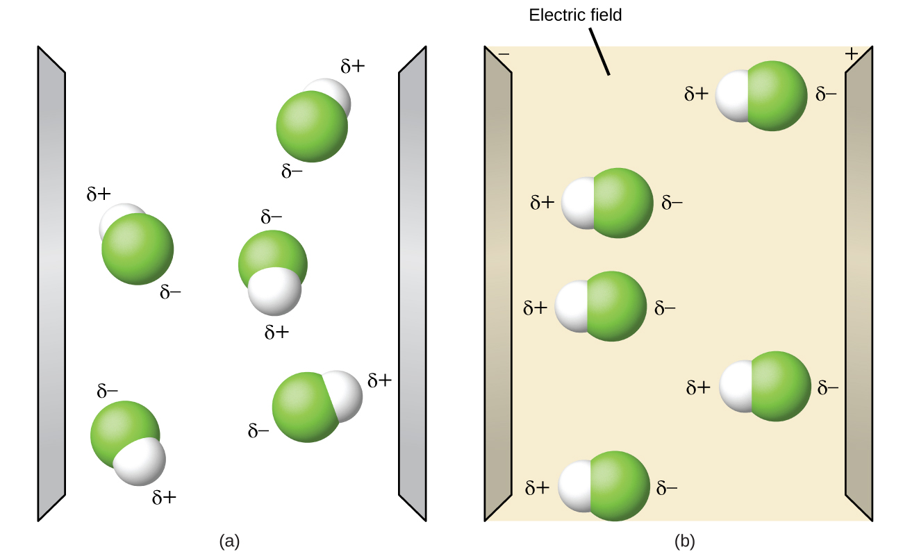 "Two diagrams are shown and labeled ""a"" and ""b."" Diagram a shows two vertical, gray electrodes. There are five molecules in between. The molecules are separate from one another and are composed of a hydrogen atom bonded to a fluorine atom. The fluorine atom is labeled with a dipole symbol and a superscripted negative sign while the hydrogen atom is labeled with a dipole symbol and a superscripted positive sign. The molecules are randomly oriented in the space. The right diagram also shows two vertical gray electrodes, the left labeled as negative and the right labeled as positive. The space between is yellow. The same molecules are present, but this time they are all facing horizontally, with the hydrogen-end of each molecule facing toward the negative electrode."