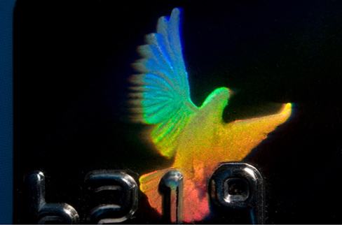 Photograph of a hologram on a credit card. It is in the shape of a bird and reflects many colours.