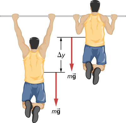 The figure is an illustration of a person doing a pull up. The person moves a vertical distance of Delta y during the pull up. A downward force of m times vector g is shown acting on the person both at the top and bottom positions of the pull up.