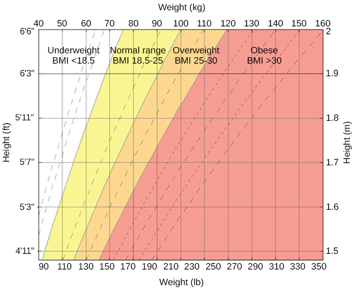 "A chart has an x-axis labeled ""weight"" (pounds/kilograms) and a y-axis labeled ""height"" (meters and feet/inches). Four areas are shaded different colors indicating the BMI for ranges of weight and height. The ""underweight BMI <18.5"" area begins at approximately 90 pounds and 4'11"" and extends to approximately 160 pounds and 6'6"". The ""normal range BMI 18.5–25"" area covers approximately 90–120 pounds at height 4'11"" and extends to approximately 160–220 pounds at height 6'6"". The ""overweight BMI 25–30"" area covers approximately 120–140 pounds at height 4'11"" and extends to approximately 220–265 pounds at height 6'6"". The ""obese range BMI >30"" area covers approximately 140–350 pounds at height 4'11"" and extends to approximately 265–350 pounds at height 6'6."""