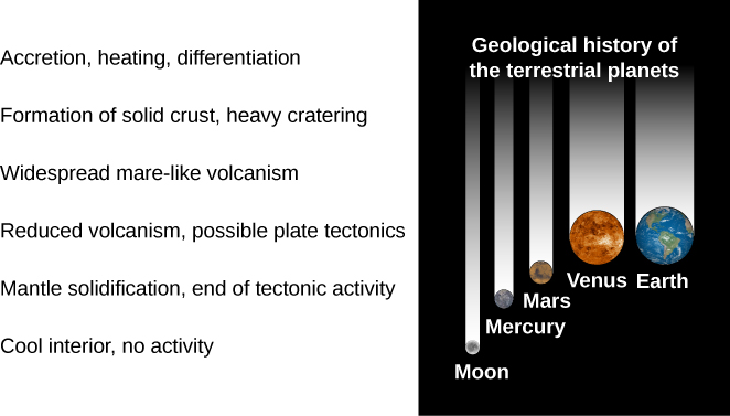 "A figure showing the stages in the geological history of a terrestrial planet. The stages are labeled from top to bottom, with representative planets shown to the right: ""Accretion, heating, differentiation"", ""Formation of solid crust, heavy cratering"", ""Widespread mare-like volcanism"", Reduced volcanism, possible plate tectonics,"" with Venus and Earth shown to the right, ""Mantle solidification, end of tectonic activity"", with Mars and Mercury shown to the right, and ""Cool interior, no activity"" with the Moon shown to the right."
