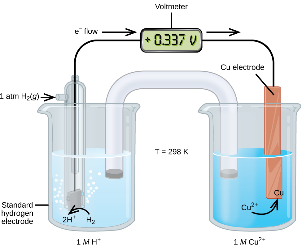 "This figure contains a diagram of an electrochemical cell. Two beakers are shown. Each is just over half full. The beaker on the left contains a clear, colorless solution and is labeled below as ""1 M H superscript plus."" The beaker on the right contains a blue solution and is labeled below as ""1 M C u superscript 2 plus."" A glass tube in the shape of an inverted U connects the two beakers at the center of the diagram. The tube contents are colorless. The ends of the tubes are beneath the surface of the solutions in the beakers and a small graylug is present at each end of the tube. The beaker on the left has a glass tube partially submersed in the liquid. Bubbles are rising from the gray square, labeled ""Standard hydrogen electrode"" at the bottom of the tube. A curved arrow points up to the right, indicating the direction of the bubbles. A black wire extends from the gray square up the interior of the tube through a small port at the top to a rectangle with a digital readout of ""positive 0.337 V,"" which is labeled ""Voltmeter."" A second small port extends out the top of the tube to the left. An arrow points to the port opening from the left. The base of this arrow is labeled ""1 a t m H subscript 2 ( g )."" The beaker on the right has an orange-brown strip that is labeled ""C u electrode"" at the top. A wire extends from the top of this strip to the voltmeter. An arrow points toward the voltmeter from the left which is labeled ""e superscript negative flow."" Similarly, an arrow points away from the voltmeter to the right. A curved arrow extends from the surrounding solution to the standard hydrogen electrode in the beaker. The end of the arrow is labeled ""H subscript 2"" and tip of this arrow is labeled ""2 H superscript plus."" A curved arrow extends from the ""C u superscript 2 plus"" label in the solution to a ""C u"" label at the lower edge of the C u electrode. Between the two beakers is the label ""T equals 298 K."""