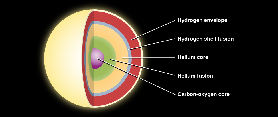 "Layers inside a Low-mass Star before Death. The layers within the core are shown as concentric circles of various colors. Starting at the center are: ""Carbon-oxygen core"" in purple, ""Helium fusion"" in green, ""Helium core"" in yellow, and the ""Hydrogen shell fusion"" layer in teal. The cooler ""Hydrogen envelope"" is shown in orange."