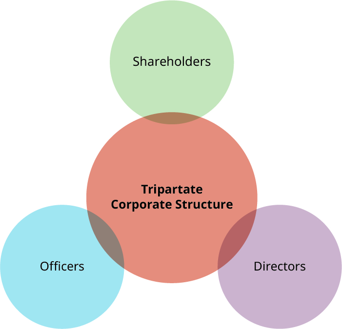 Cartoon with Tripartate Corporate Structure in a central circle. There is a partially overlapping circle at the top (Shareholders),another partially overlapping circle at the bottom right (Directors), and another partially overlapping circle at the bottom left (Officers).
