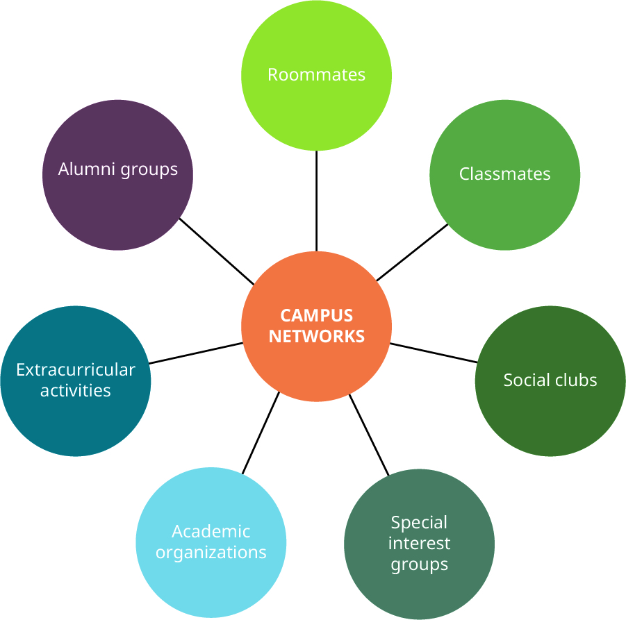 A figure showing Campus Networks in the middle, connected to Roommates, Classmates, Social clubs, Special interest groups, Academic organizations, Extracurricular activities, and Alumni groups.