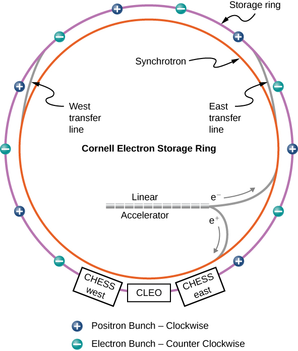 Figure shows two rings, one inside the other. The outer ring is labeled storage ring. Along it are small circles alternately labeled plus and minus. The circles with plus sign are positron bunch, clockwise. The circles with negative sign are electron bunch, counter clockwise. The outer ring also has three boxes along it at the bottom. From left to right, these are labeled CHESS west, CLEO and CHESS east. The inner ring is labeled Synchrotron. Two lines connect it to the outer ring. The line on the left is West transfer line and the one on the right is East transfer line. A tube within the inner ring is labeled Linear Accelerator. Two lines labeled e plus and e minus connect it to the inner ring.