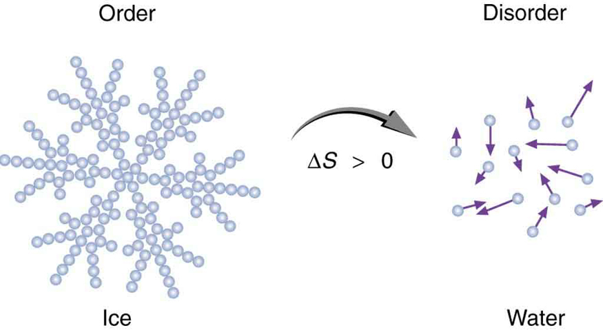 The diagram has two images. The first image shows molecules of ice. They are represented as tiny spheres joined to form a floral pattern. The system is shown as ordered. The second image shows what happens when ice melts. The change in entropy delta S is marked between the two images shown by an arrow pointing from first image toward the second image with change in entropy delta S shown greater than zero. The second image represents water shown as tiny spheres moving in a random state. The system is marked as disordered.