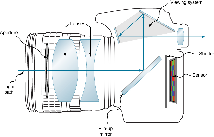 Figure shows the side view of a digital camera. At the front of the camera is a disc labeled aperture, followed by a bi-convex lens, a bi-concave lens, a slanted mirror labeled flip-up mirror, a shutter and a sensor. The light path is shown such that light enters the camera through the aperture and lenses and strikes the mirror. It is reflected upwards to the viewing system. Here it reflects from two more mirrors before going through a bi-convex lens and emerging out of the camera.