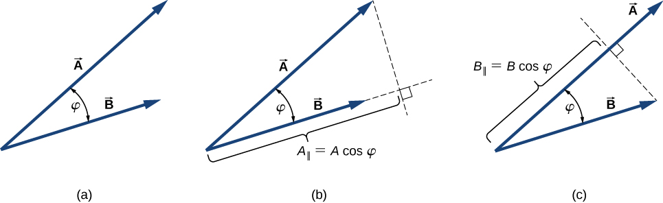 Figure a: vectors A and B are shown tail to tail. A is longer than B. The angle between them is phi. Figure b: Vector B is extended using a dashed line and another dashed line is drawn from the head of A to the extension of B, perpendicular to B. A sub perpendicular is equal to A magnitude times cosine phi and is the distance from the vertex where the tails of A and B meet to the location where the perpendicular from A to B meets the extension of B. Figure c: A dashed line is drawn from the head of B to A, perpendicular to A. The distance from the tails of A and B to where the dashed line meets B is B sub perpendicular and is equal to magnitude B times cosine phi.