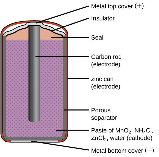 "A diagram of a cross section of a dry cell battery is shown. The overall shape of the cell is cylindrical. The lateral surface of the cylinder, indicated as a thin red line, is labeled ""zinc can (electrode)."" Just beneath this is a slightly thicker dark grey surface that covers the lateral surface, top, and bottom of the battery, which is labeled ""Porous separator."" Inside is a purple region with many evenly spaced small darker purple dots, labeled ""Paste of M n O subscript 2, N H subscript 4 C l, Z n C l subscript 2, water (cathode)."" A dark grey rod, labeled ""Carbon rod (electrode),"" extends from the top of the battery, leaving a gap of less than one-fifth the height of the battery below the rod to the bottom of the cylinder. A thin grey line segment at the very bottom of the cylinder is labeled ""Metal bottom cover (negative)."" The very top of the cylinder has a thin grey surface that curves upward at the center over the top of the carbon electrode at the center of the cylinder. This upper surface is labeled ""Metal top cover (positive)."" A thin dark grey line just below this surface is labeled ""Insulator."" Below this, above the purple region, and outside of the carbon electrode at the center is an orange region that is labeled ""Seal."""