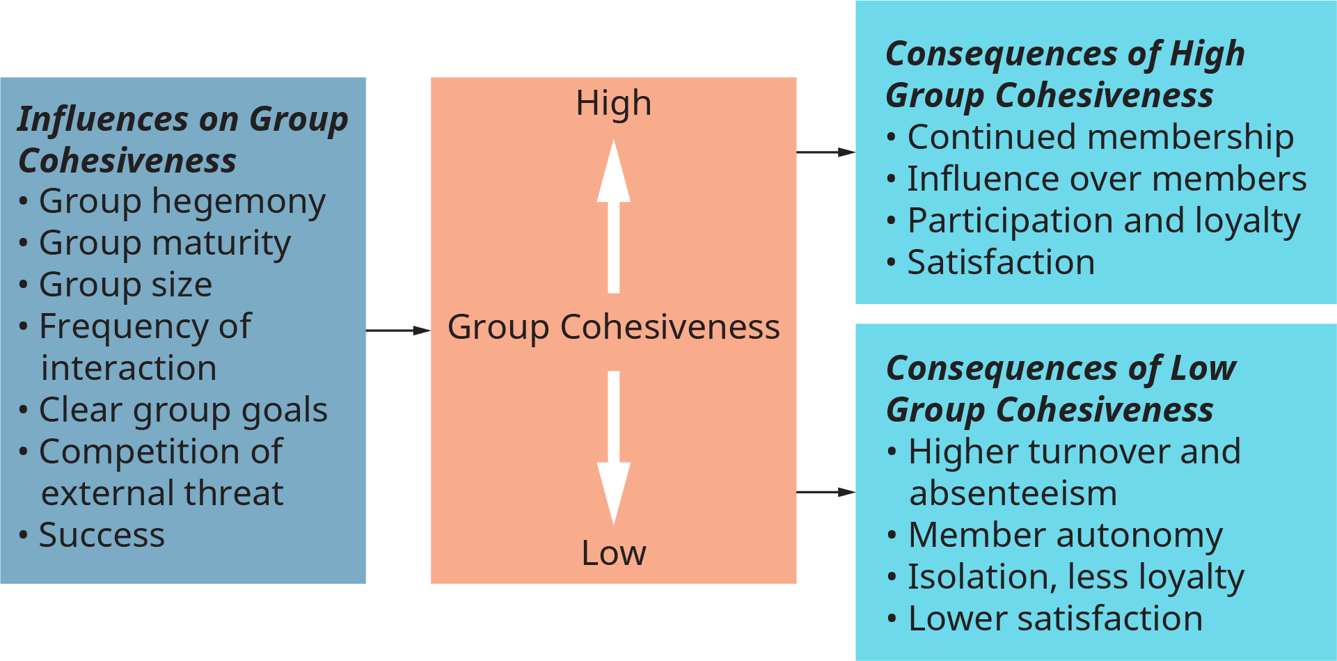 A diagram represents the determinants and consequences of group cohesiveness.