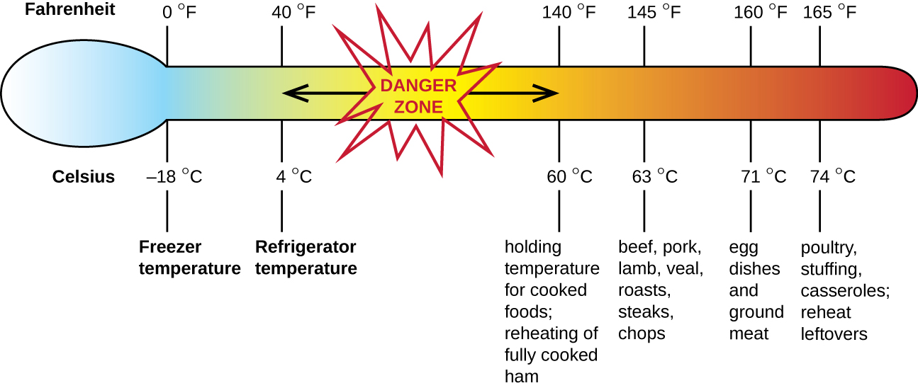 This figure shows a large thermometer with Fahrenheit and Celsius marks for freezer temperature, refrigerator temperature, safe holding temperature for cooked foods, and safe internal cooking temperatures for different meets and prepared meals. The figure identifies the danger zone between refrigerator temperature of 40 degrees Fahrenheit or 4 degree Celsius and the safe holding temperature of 140 degrees Fahrenheit or 60 degrees Celsius for cooked foods. It is within this danger zone that microbial growth presents a risk for foodborne diseases.