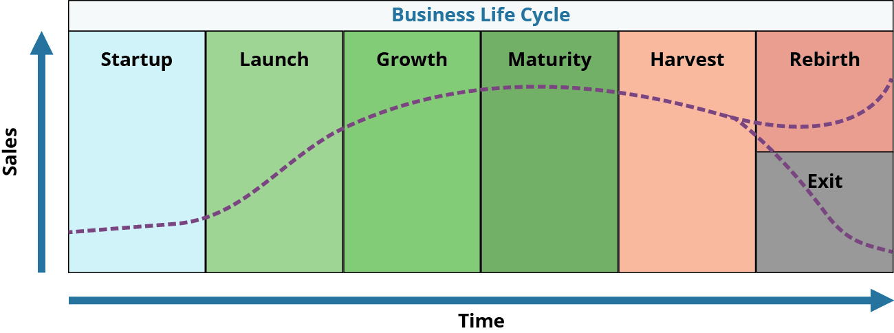 The Business Life Cycle moves from startup to launch to growth to maturity to harvest and then can either enter rebirth or death. A curved line shows this progression.