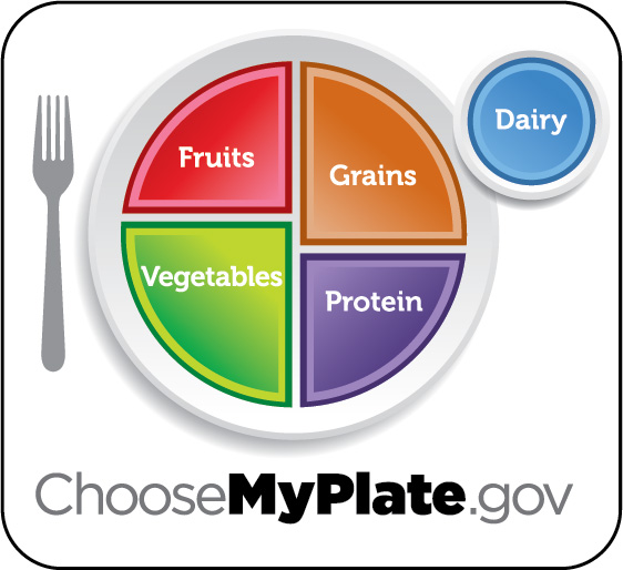 An image shows a food circle depicting a place setting with a plate and glass divided into five food groups.