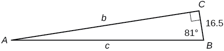 A right triangle with corners labeled A, B, and C. Sides labeled b, c, and 16.5. Angle of 81 degrees also labeled.