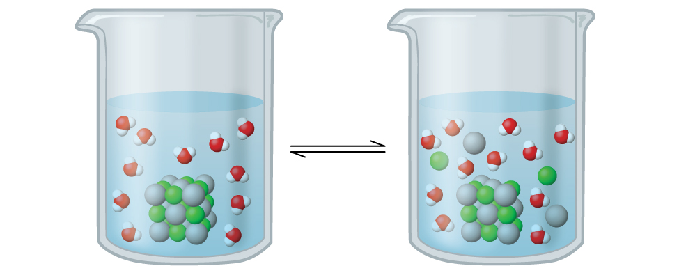 Two beakers are shown with a bidirectional arrow between them. Both beakers are just over half filled with a clear, colorless liquid. The beaker on the left shows a cubic structure composed of alternating green and slightly larger grey spheres. Evenly distributed in the region outside, 11 space filling models are shown. These are each composed of a central red sphere with two smaller white spheres attached in a bent arrangement. In the beaker on the right, the green and grey spheres are no longer connected in a cubic structure. Nine green spheres, 10 grey spheres, and 11 red and white molecules are evenly mixed and distributed throughout the liquid in the beaker.