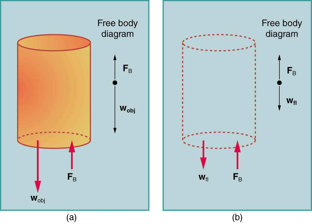 An object immersed in a fluid rises if its buoyant force is greater than its weight and sinks if its buoyant force is less than its weight. By Archimedes' principle the buoyant force equals the weight of the fluid displaced.
