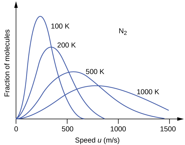 "A graph with four positively or right-skewed curves of varying heights is shown. The horizontal axis is labeled, ""Speed u ( m divided by s )."" This axis is marked by increments of 500 beginning at 0 and extending up to 1500. The vertical axis is labeled, ""Fraction of molecules."" The label, ""N subscript 2,"" appears in the open space in the upper right area of the graph. The tallest and narrowest of these curves is labeled, ""100 K."" Its right end appears to touch the horizontal axis around 700 m per s. It is followed by a slightly wider curve which is labeled, ""200 K,"" that is about three quarters of the height of the initial curve. Its right end appears to touch the horizontal axis around 850 m per s. The third curve is significantly wider and only about half the height of the initial curve. It is labeled, ""500 K."" Its right end appears to touch the horizontal axis around 1450 m per s. The final curve is only about one third the height of the initial curve. It is much wider than the others, so much so that its right end has not yet reached the horizontal axis. This curve is labeled, ""1000 K."""