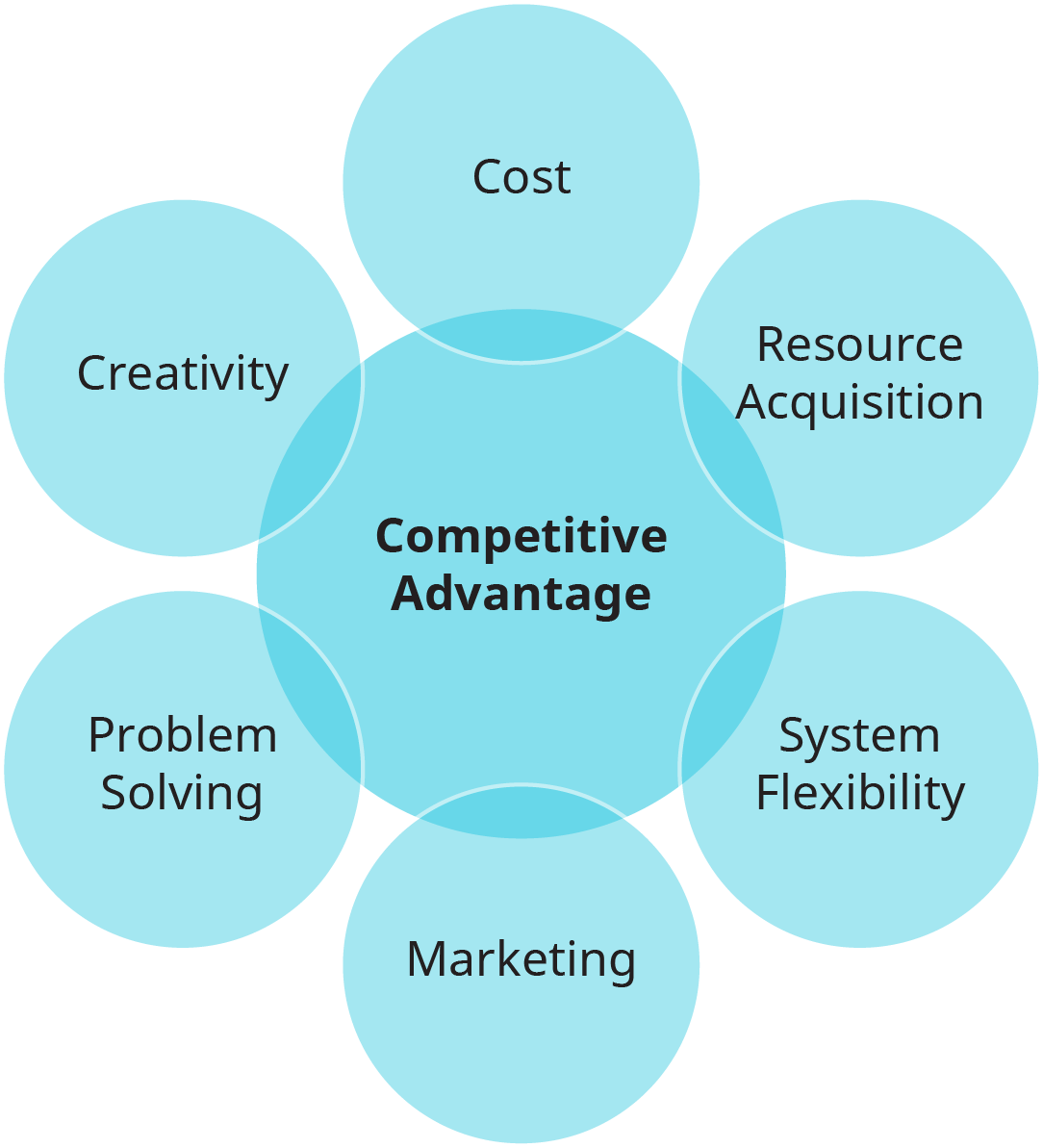 An illustration shows six opportunities that companies may receive when pursuing a strategy.
