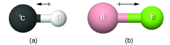 "Two images are shown and labeled, ""a"" and ""b."" Image a shows a large sphere labeled, ""C,"" a left-facing arrow with a crossed end, and a smaller sphere labeled ""H."" Image b shows a large sphere labeled, ""B,"" a right-facing arrow with a crossed end, and a smaller sphere labeled ""F."""